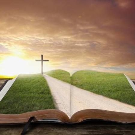 27594898-een-open-bijbel-met-een-weg-en-grasveld-leidt-tot-een-kruis-